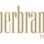 Dekoral i Drewnochron z laurami XI edycji Superbrands 2016/2017